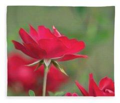 Rose 4 Fleece Blanket