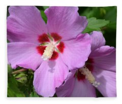 Rose Of Sharon Fleece Blanket