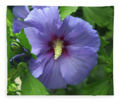 Rose Of Sharon Hibiscus Fleece Blanket