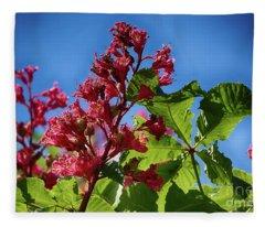 Rot Bluehender Kastanienbaum Fleece Blanket