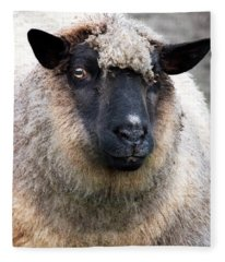Round Sheep Fleece Blanket