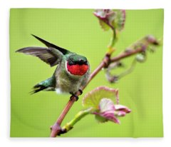 Fleece Blanket featuring the photograph Ruby Garden Hummingbird by Christina Rollo