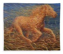 Running Swirly Horse Fleece Blanket