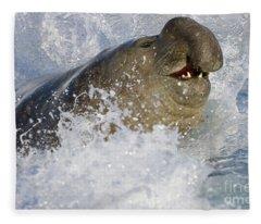 S Elephant Seal In The Surf Fleece Blanket