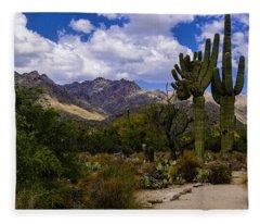Sabino Canyon No4 Fleece Blanket