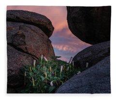Sacred Datura Amongst The Boulders Fleece Blanket