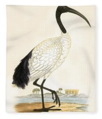 Sacred Ibis Fleece Blanket