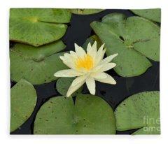 Sacred Lotus Fleece Blanket