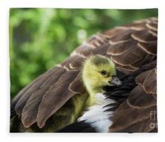 Safe Place Fleece Blanket