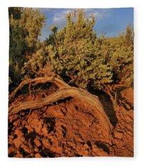 Sagebrush At Sunset Fleece Blanket