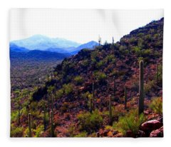 Saguaro National Park Winter 2010 Fleece Blanket