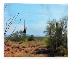 Saguaros In Sonoran Desert Fleece Blanket