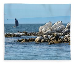 Sailboat At Bird Rock Fleece Blanket