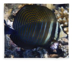Sailfin Tang  Fleece Blanket
