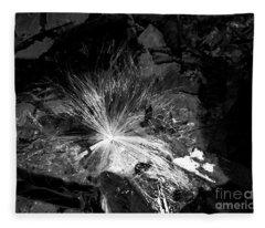 Salix Seed Fleece Blanket