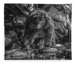 Salmon Seeker Black Bear  Fleece Blanket