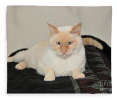 Sam I Am Fleece Blanket