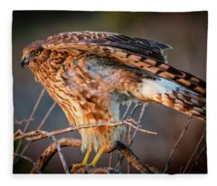 San Diego-redtail Hawk Fleece Blanket