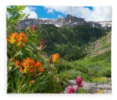 San Juans Indian Paintbrush Landscape Fleece Blanket