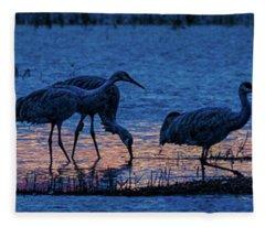 Sandhill Cranes At Twilight Fleece Blanket