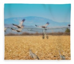 Sandhill Cranes In Flight Fleece Blanket