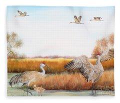 Sandhill Cranes-jp3159 Fleece Blanket