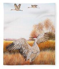 Sandhill Cranes-jp3161 Fleece Blanket