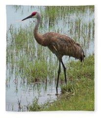 Sandhill In The Marsh Fleece Blanket