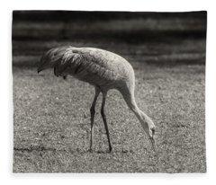 Sandhill Fleece Blanket
