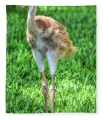 Sandy Crane Is All Legs Fleece Blanket