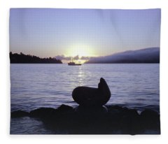 Sausalito Morning Fleece Blanket