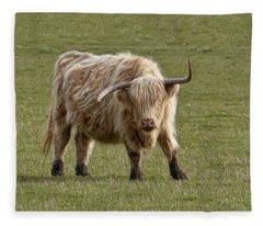 Sauvie Island Cow Fleece Blanket