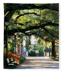Savannah Park Sidewalk Fleece Blanket