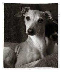 Say What Italian Greyhound Fleece Blanket