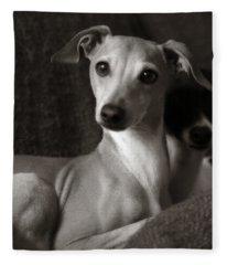 Say What Italian Greyhound Fleece Blanket