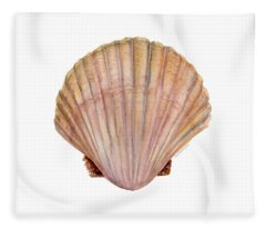Scallop Shell Fleece Blanket
