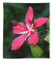 Scarlet Hibiscus #4 Fleece Blanket