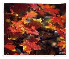 Scarlet September Fleece Blanket