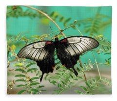 Scarlet Swallowtail Butterfly -2 Fleece Blanket