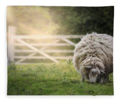 Sheep Fleece Blanket