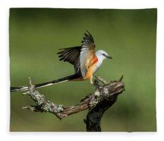 Scissor-tailed Flycatcher Fleece Blanket