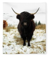 Scottish Black Highland Coo Fleece Blanket