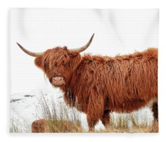Scottish Highland Cow Fleece Blanket