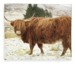 Scottish Red Highland Cow In Winter Fleece Blanket