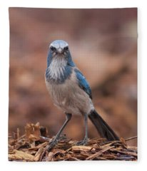 Scrub Jay On Chop Fleece Blanket