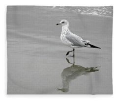Sea Gull Walking In Surf Fleece Blanket