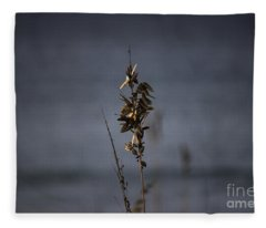 Sea Oat Fleece Blanket