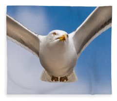 Seabird Closeup Fleece Blanket