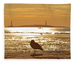 Seagull Admiring Thacher Island Gloucester Ma Good Harbor Beach Fleece Blanket