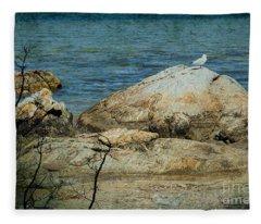 Seagull On A Rock Fleece Blanket